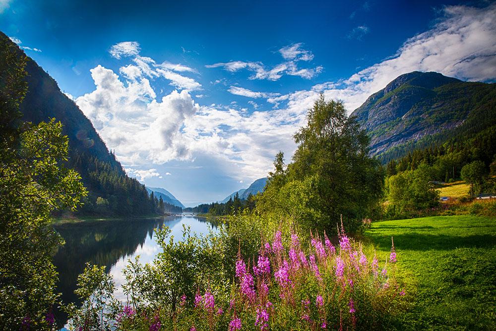 Norwegian summer landscape. Photo: John Einar Sandvand. Picspiration Sunday.