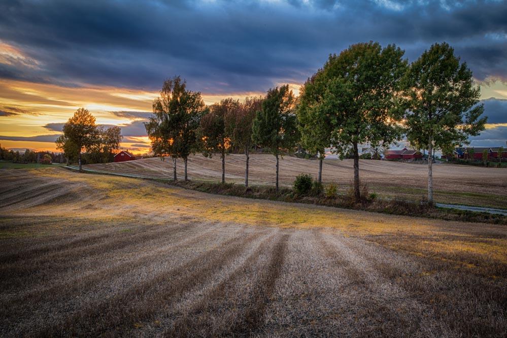 Autumn fields. Landscape photo: John Einar Sandvand
