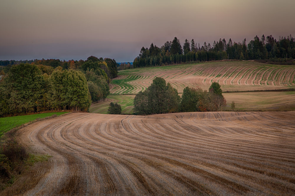 Field curves. Landscape photo: John Einar Sandvand