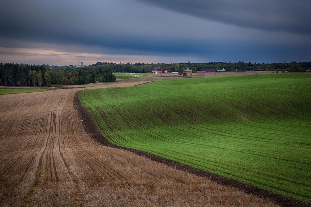 Rolling fields. Landscape photo: John Einar Sandvand