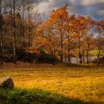Let the beautiful autumn colors inspire your photography