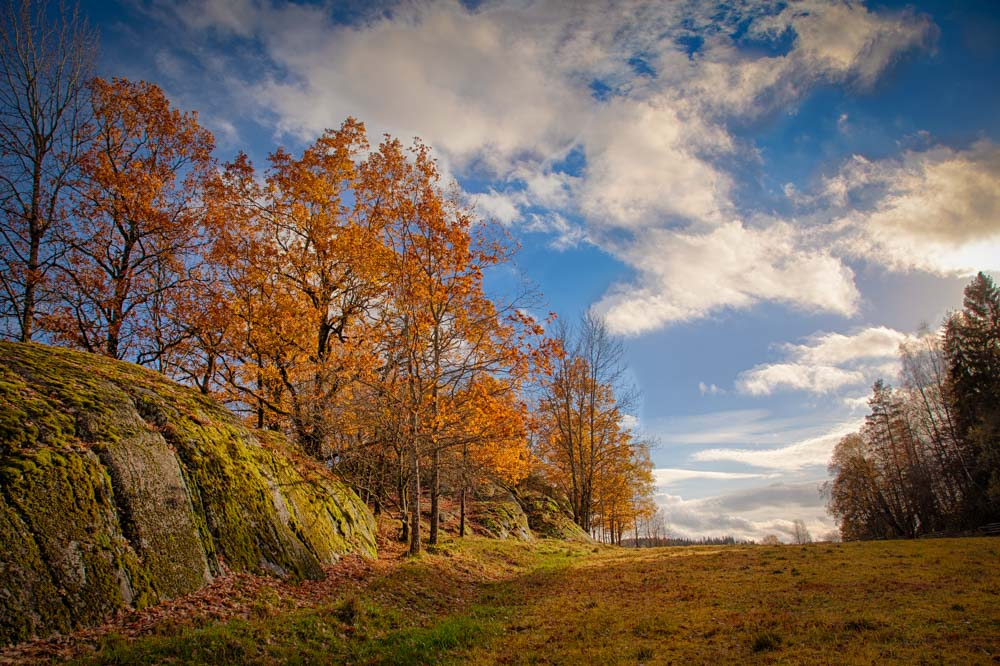 Typical HDR situation. The sky is much brigher than the trees and ground. Using HDR all is correctly exposed - and the viewer sees a much more dynamic range of autumn colors in the image. Photo: John Einar Sandvand