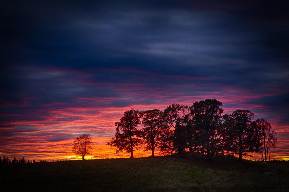Sunset in Ås. Photo: John Einar Sandvand