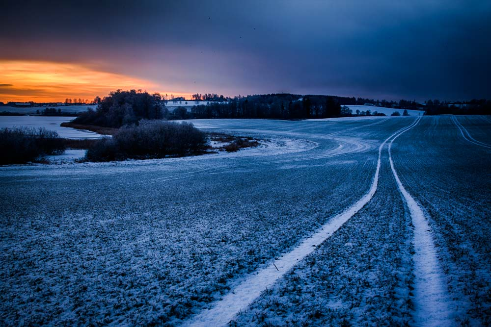 Winter tracks by the Østensjø lake. Photo: John Einar Sandvand