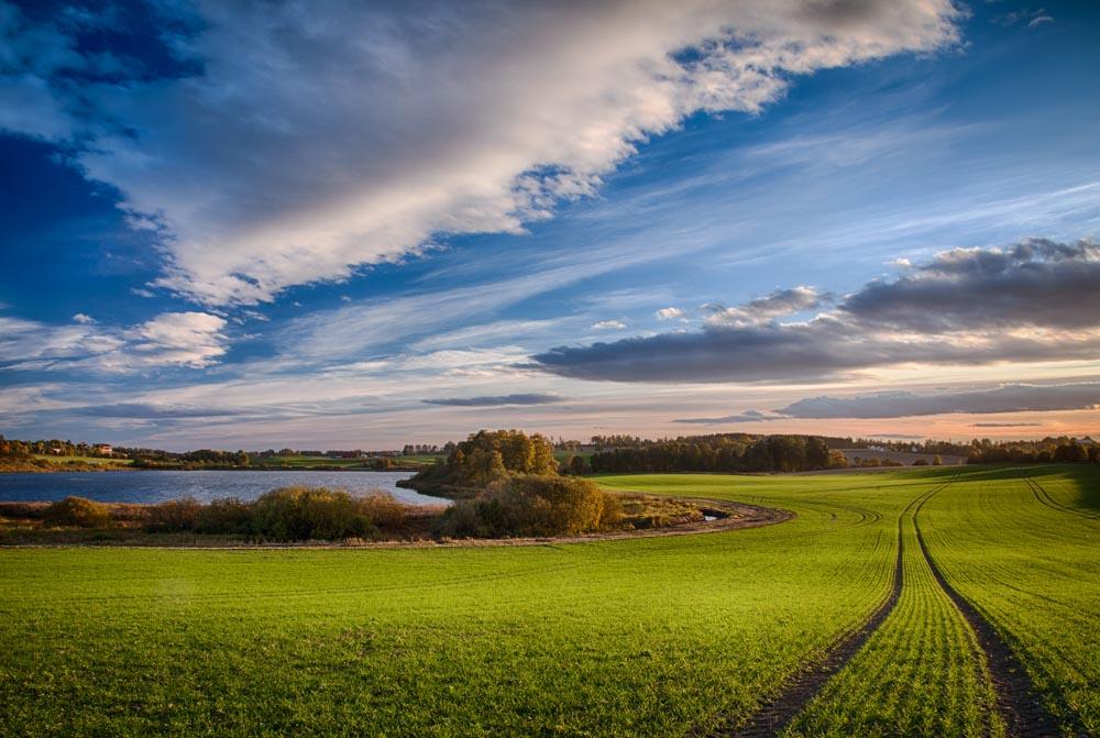 Åker ved Østensjøvannet. Foto: John Einar Sandvand