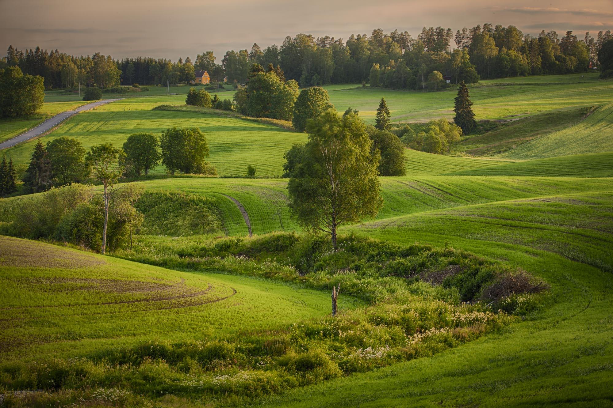 047 - Åkerlandskap i Kroer Foto: John Einar Sandvand